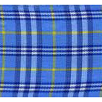 RIBBON SCOTLAND 25MM BLUE YEL